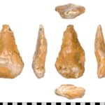Palaeolithic Acheulian hand axe found in Somerset (SOM-40E374). Copyright: Somerset County Council, CC-BY Licence.
