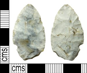 Neolithic leaf arrowhead found in Wiltshire (WILT-942701). Copyright: Salisbury and South Wiltshire Museum, CC-BY Licence.