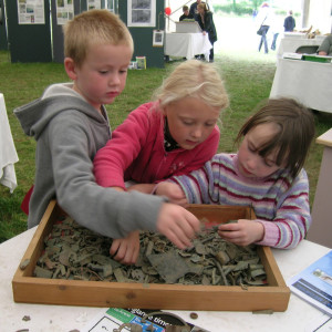 Three children rummage in the finds tray on a PAS stall