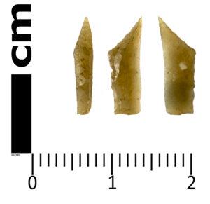 Mesolithic Microlith SWYOR-0491F6