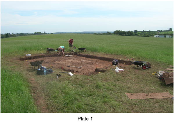 Plate 1: the site under excavation, summer 2009