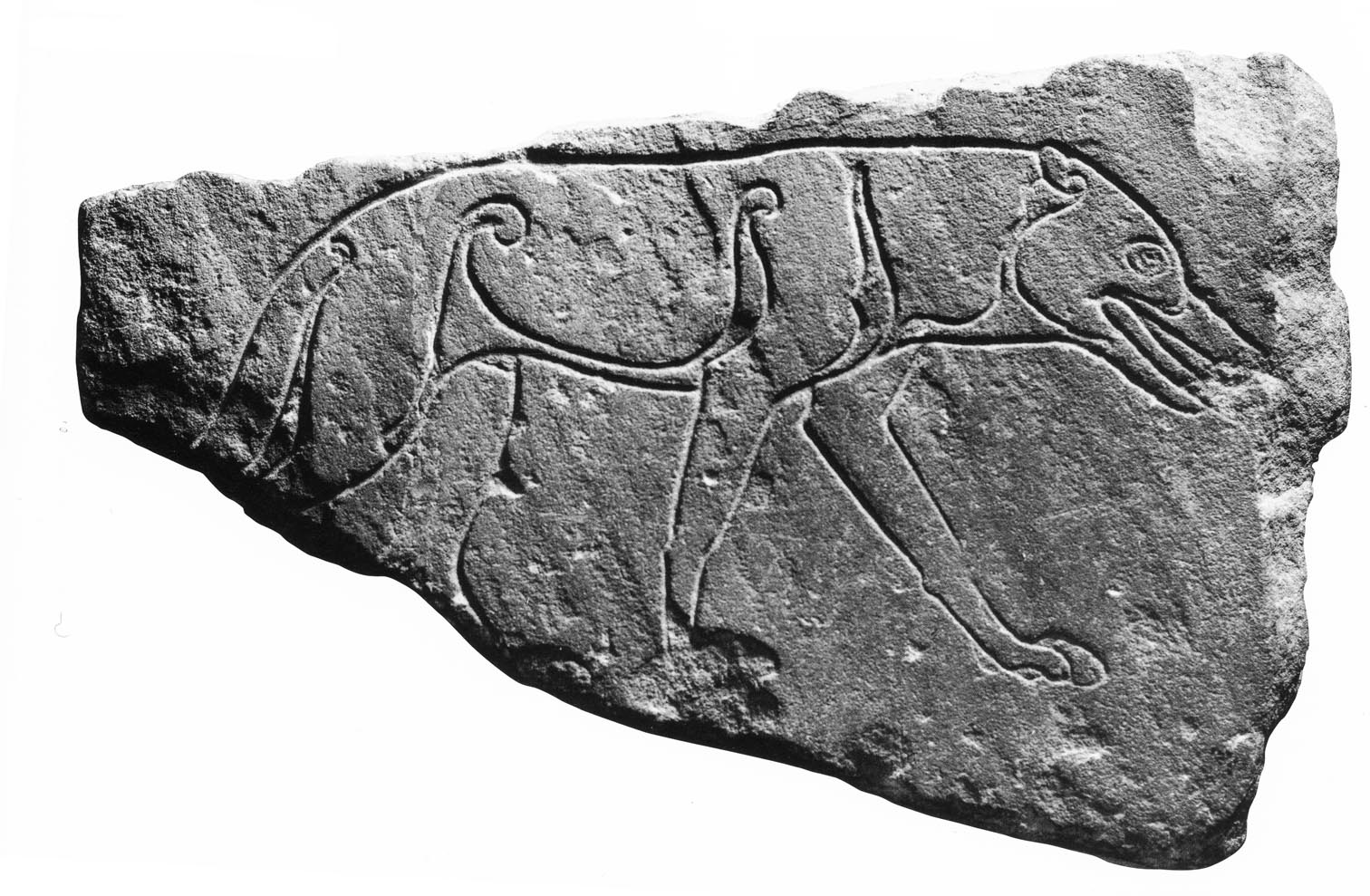 The implications of the staffordshire hoard for the understanding 191 vo detail the sittenham wolf buycottarizona Images