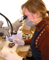 A conservator cleaning an object under a microscope