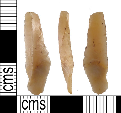 SUSS-37A3F7: An incomplete mesolithic flint flake, possibly a microlith blank or debitage, 8000-4500BC