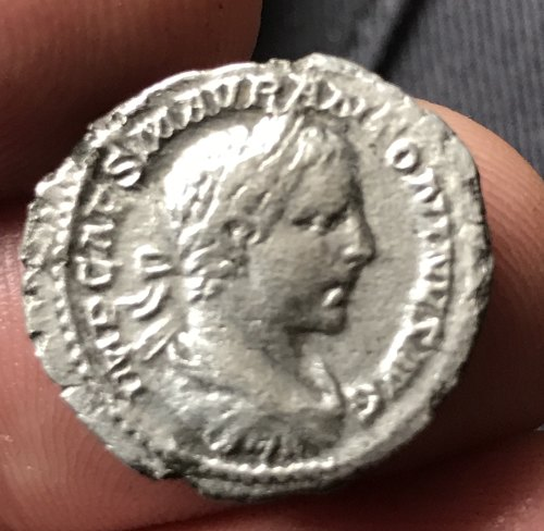 PUBLIC-05621F: denarius