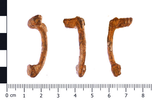 WAW-7926AC: Iron Age to Roman brooch: Nauheim derivative, La Tene III (profile, plan and reverse).