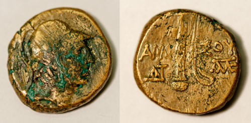 BM-445587: Greek coin: bronze coin of Amisus