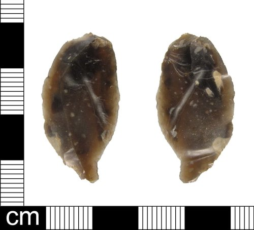ESS-DD2BF1: A piece of Mesolithic flint debotage, dating 9,000-3450 BC.