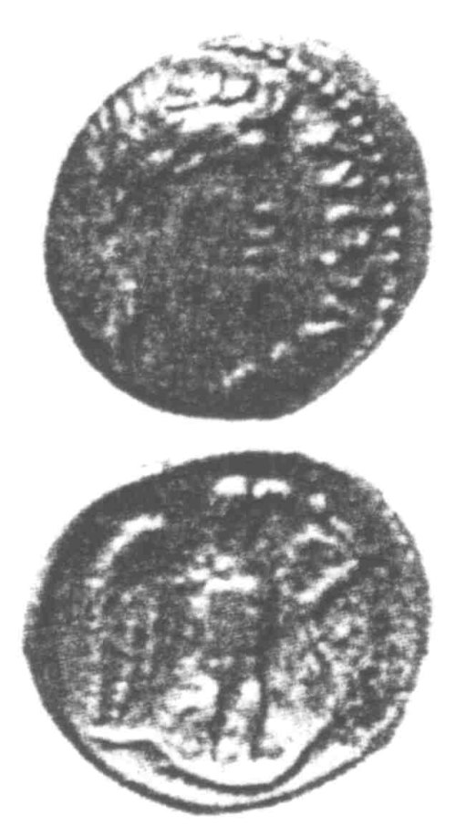 CCI-960062: An Iron Age Unit from SURREY of Tincomarus Atrebates Celtic Coin Index reference:  96.0062