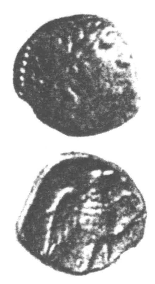 A resized image of An Iron Age Unit from SURREY Atrebates Celtic Coin Index reference:  96.0065