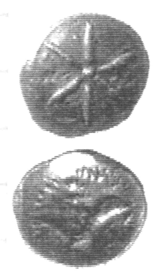 A resized image of An Iron Age Unit from SURREY Atrebates Celtic Coin Index reference:  96.0114