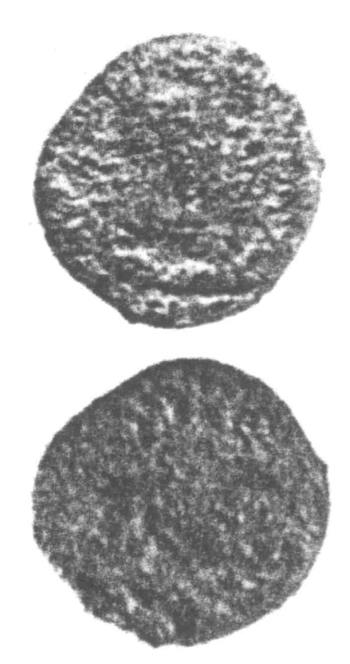 A resized image of An Iron Age Unit from SURREY Atrebates Celtic Coin Index reference:  96.0203