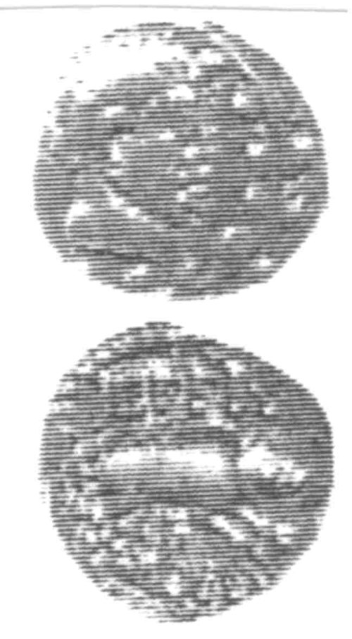A resized image of An Iron Age Unit from SURREY of Eppillus Atrebates Celtic Coin Index reference:  96.0236