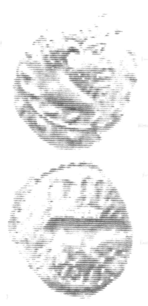 A resized image of An Iron Age Unit from SURREY of Eppillus Atrebates Celtic Coin Index reference:  96.0239