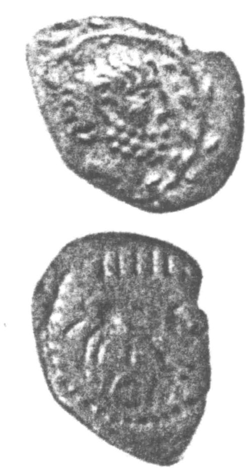 A resized image of An Iron Age Unit from SURREY of Eppillus Atrebates Celtic Coin Index reference:  96.024