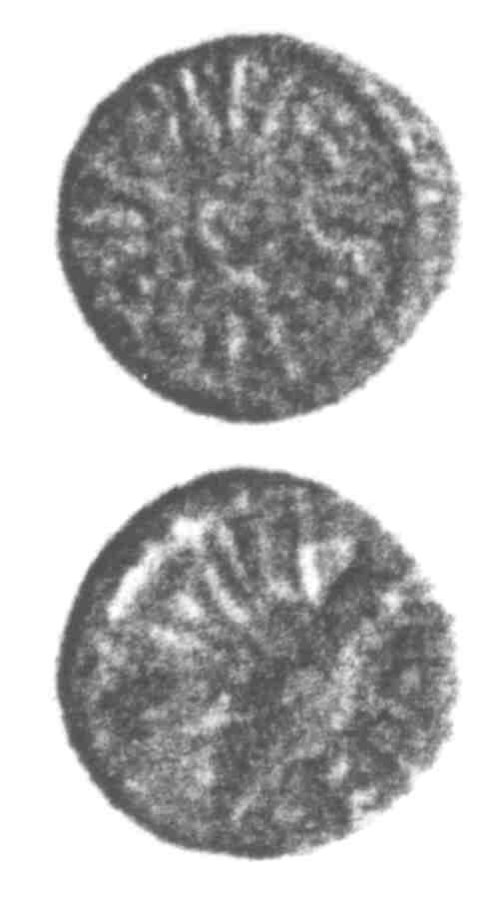 A resized image of An Iron Age Minim from SURREY Atrebates Celtic Coin Index reference:  96.0261