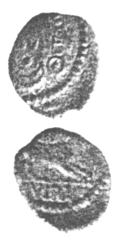 CCI-960295: An Iron Age Unit from SURREY of Verica Atrebates Celtic Coin Index reference:  96.0295