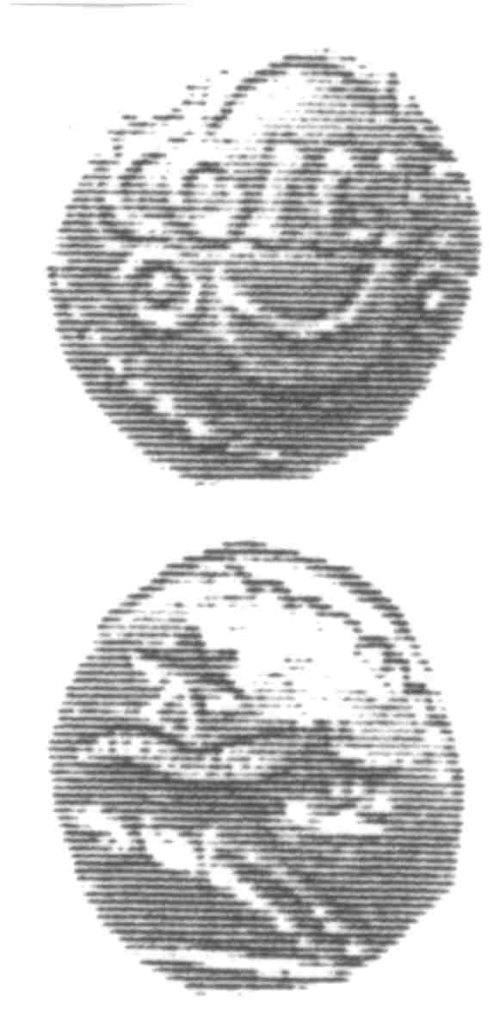 A resized image of An Iron Age Unit from SURREY of Verica Atrebates Celtic Coin Index reference:  96.0298