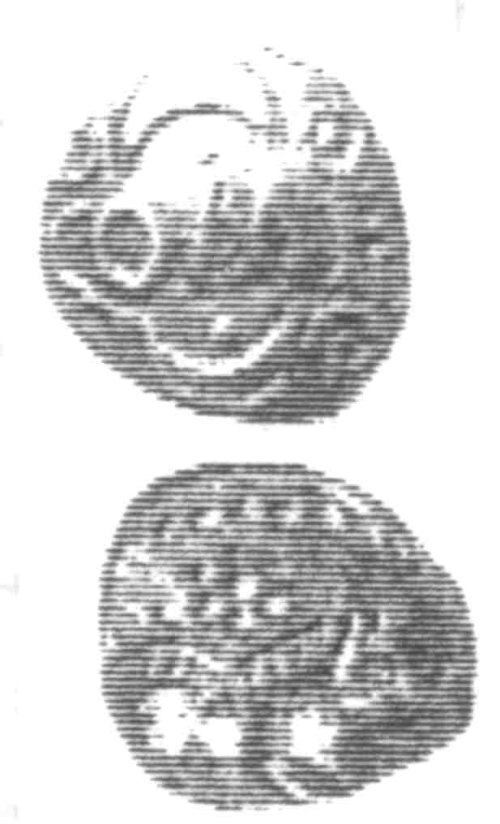 CCI-960309: An Iron Age Unit from SURREY of Verica Atrebates Celtic Coin Index reference:  96.0309