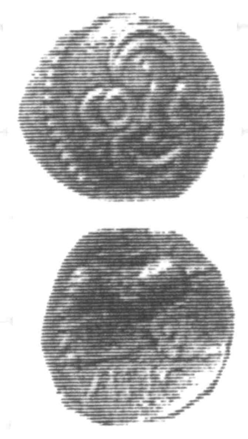 A resized image of An Iron Age Unit from SURREY of Verica Atrebates Celtic Coin Index reference:  96.0314
