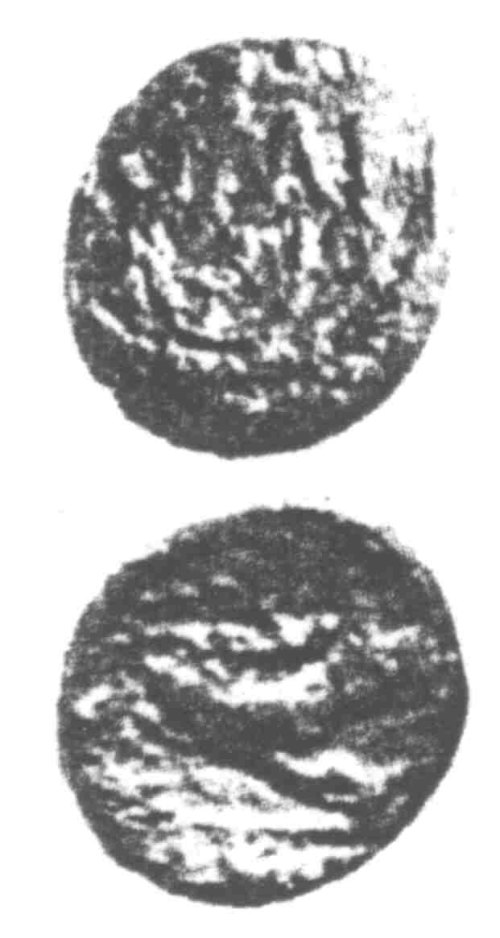 CCI-960319: An Iron Age Unit from SURREY of Verica Atrebates Celtic Coin Index reference:  96.0319