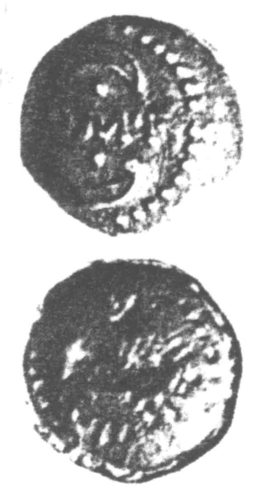 A resized image of An Iron Age Unit from SURREY of Verica Atrebates Celtic Coin Index reference:  96.0333