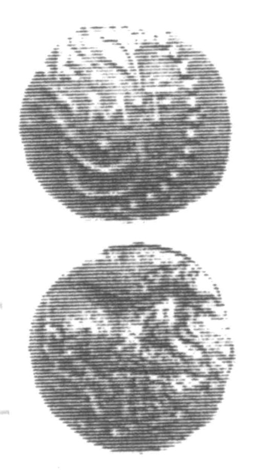 A resized image of An Iron Age Unit from SURREY of Verica Atrebates Celtic Coin Index reference:  96.0358