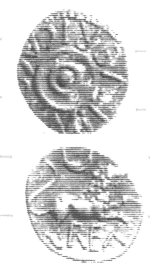 CCI-960377: An Iron Age Unit from SURREY of Verica Atrebates Celtic Coin Index reference:  96.0377
