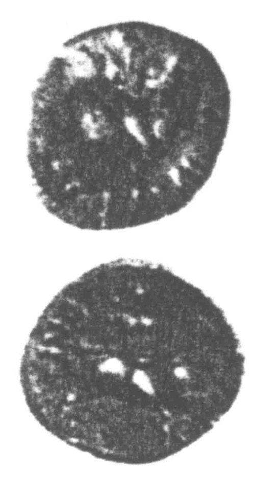 A resized image of An Iron Age Unit from SURREY of Verica Atrebates Celtic Coin Index reference:  96.0392
