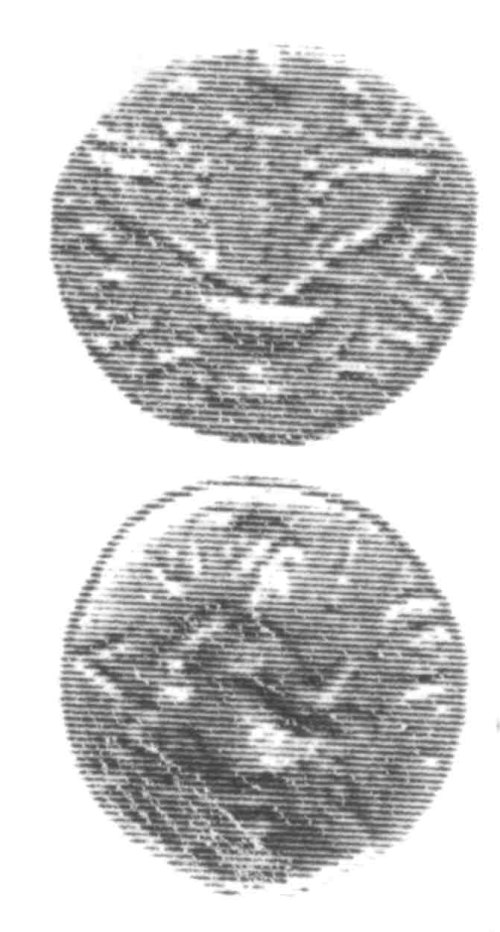 CCI-960409: An Iron Age Unit from SURREY of Verica Atrebates Celtic Coin Index reference:  96.0409