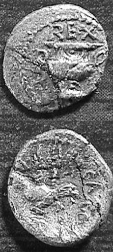 CCI-991901: An Iron Age Minim from SURREY of Verica Atrebates Celtic Coin Index reference:  99.1901