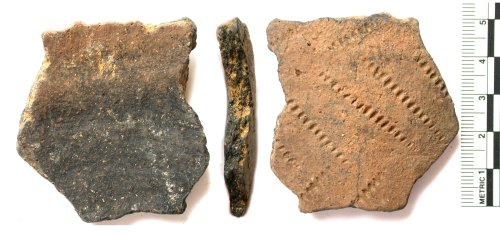 BUC-118204: Iron Age pot sherd