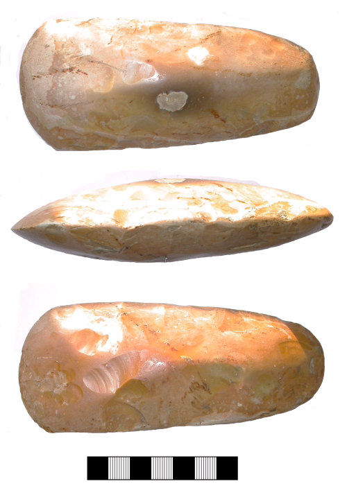 SUR-E81C51: Neolithic: Polished flint axe