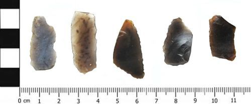 A resized image of Microlith Blades Ventral : Mesolithic