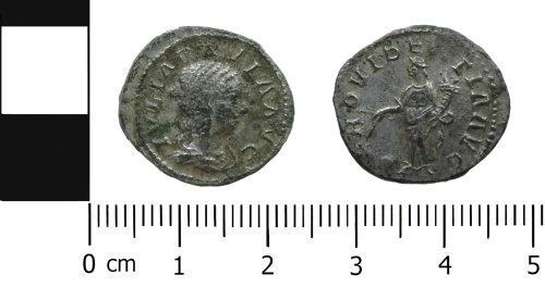 DENO-E6C55B: Roman Coin: Denarius of Julia Paula