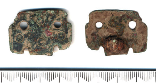 SF5348: Early-medieval small-long brooch fragment