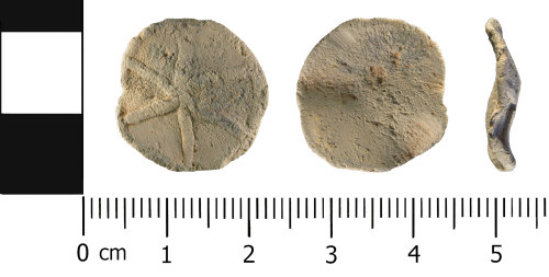 A resized image of Late Medieval to Post Medieval: Lead Alloy Unifaced Token