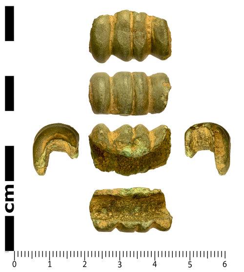 SWYOR-421C5D: Possible Iron Age shield binding clip