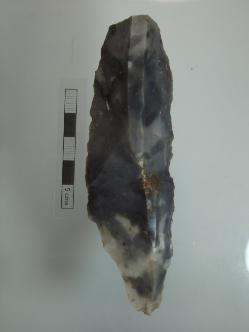 NMS-91419B: