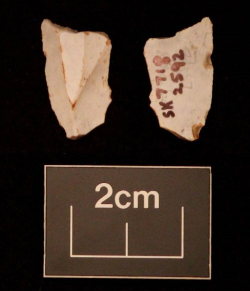 LEIC-562662: Mesolithic flint microlith
