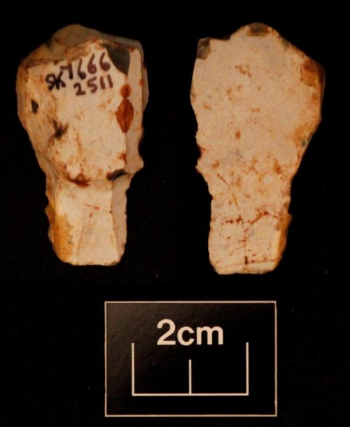 LEIC-A3FE43: Mesolithic flint flake