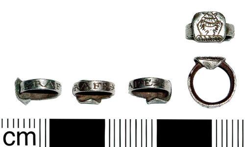 Heraldic Small Ring Crossword Clue