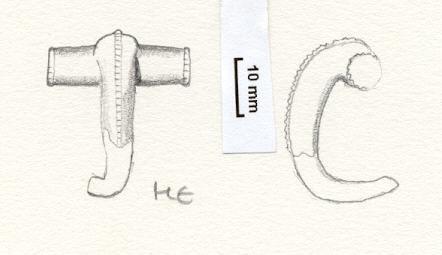NLM761: bow brooch