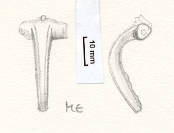 NLM801: Bow brooch