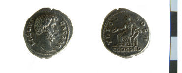 A resized image of Roman coin : Denarius of Lucius Aelius