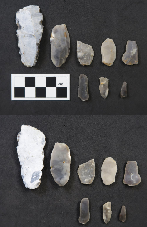 HAMP-850436: Neolithic/ Bronze Age debitage