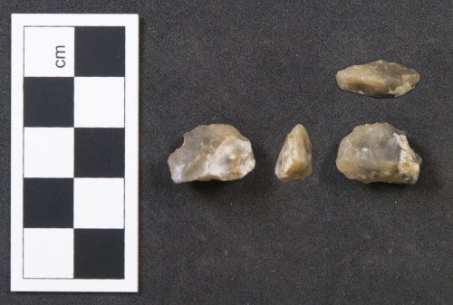 HAMP-8593BB: Neolithic/ Bronze Age lithic implement (probably)