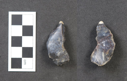 HAMP-873D91: Neolithic/ Bronze Age lithic implement (possibly)