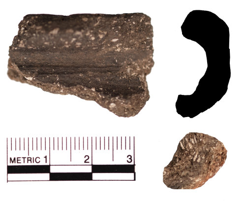 FAKL-982831: Early Medieval rim sherd