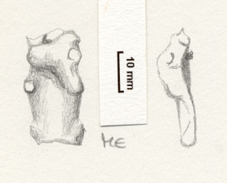 NLM963: Foot of a small long brooch which has gone through a funerary pyre.